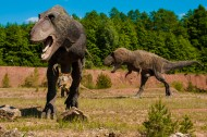 白堊紀時期的恐龍圖片_15張