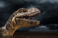 恐龍創意圖片_9張
