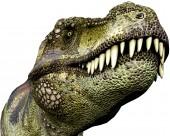 恐龍模型圖片_8張