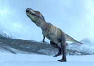 恐龙图片_9张