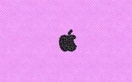 Apple主题图片_20张