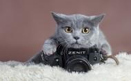 Zenit相机图片_9张
