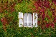 外形各異的窗戶圖片_10張