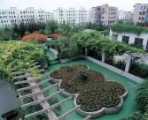 城市绿化图片_20张