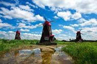 荷蘭風車圖片_11張