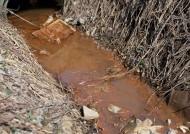 环境污染问题图片_49张