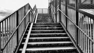 宽阔的楼梯图片_11张