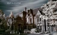 opcity城市废墟图片_32张