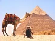 雄伟的金字塔图片_10张