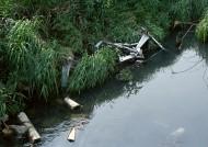 水污染图片_19张