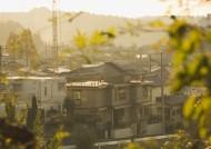 夕阳的城镇图片_16张