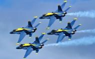 """美國海軍""""藍天使""""飛行表演隊圖片_4張"""