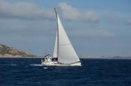航行的帆船图片_13张