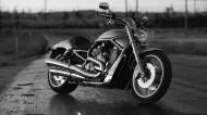 哈雷戴維森摩托車圖片_8張