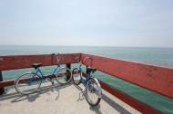 停放的自行车图片_11张