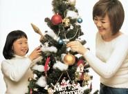 圣诞情景图片_29张