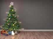 室内圣诞树图片_9张