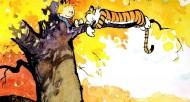 漫画《Calvin Hobbes》图片_11张