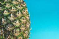 好吃的菠萝图片_12张