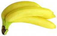 新鲜的香蕉图片_17张