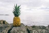 美味的菠萝图片_15张