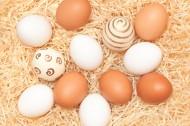 可爱的彩绘蛋蛋摄影高清图片_15张