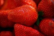 美味可口的红色草莓图片_12张