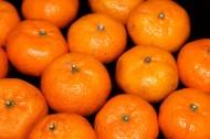 橘子图片_8张