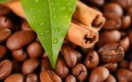 咖啡豆图片_26张