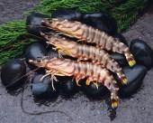 美味的大蝦圖片_15張