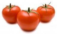 番茄特写图片_11张