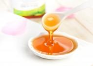 香甜营养的蜂蜜图片_11张