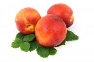 好吃的桃子图片_12张