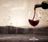 红酒与高脚杯图片_18张