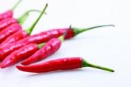 紅辣椒、尖椒圖片_10張