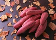 新鲜红薯图片_12张