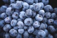 精选蓝莓图片_12张