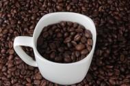 杯中的咖啡豆圖片_15張