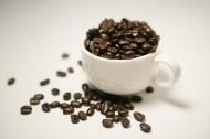 咖啡豆图片_21张