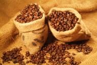 咖啡豆图片_35张