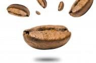 咖啡豆高清图片_18张