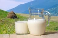 可口的牛奶图片_11张