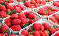 可口新鲜的草莓图片_16张