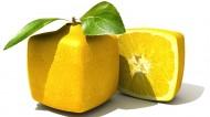 诱人的柠檬图片_6张