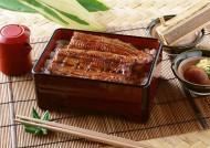 美味的日式鳗鱼饭图片_8张
