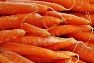 美味的胡萝卜图片_15张
