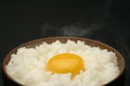 香甜软儒的米饭图片_20张