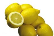 柠檬图片_25张