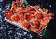 海鮮食材螃蟹的圖片_15張