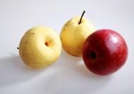 苹果与梨图片_7张